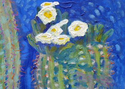 Flowering Cactus #1