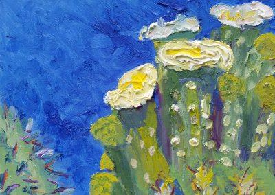 Flowering Cactus #2